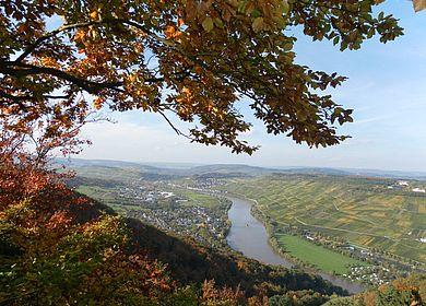 Wanderaussichtspunkt Wilhelmshöhe in der Weinstadt Bernkastel-Kues